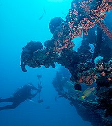 Dive Packages at Red Sail Sports Aruba